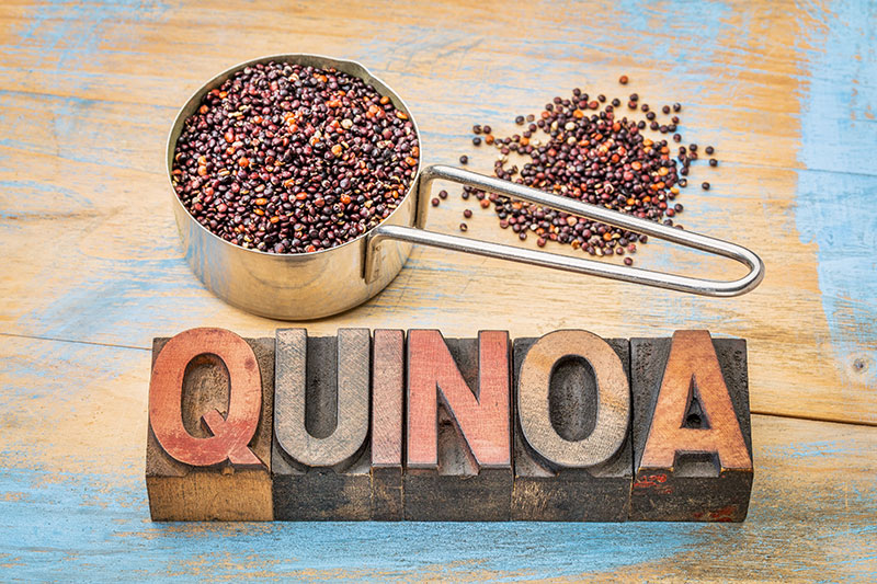 quinoa en scoop
